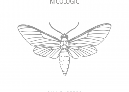 nicologic-silhouettes-cover